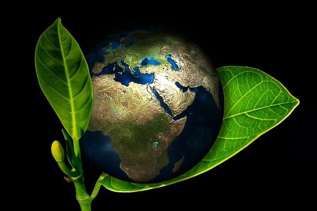 Zemlja Planeta