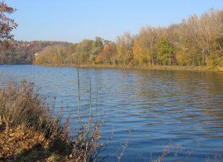 Dunav Reka
