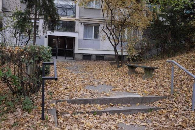 Lišće ispred zgrade