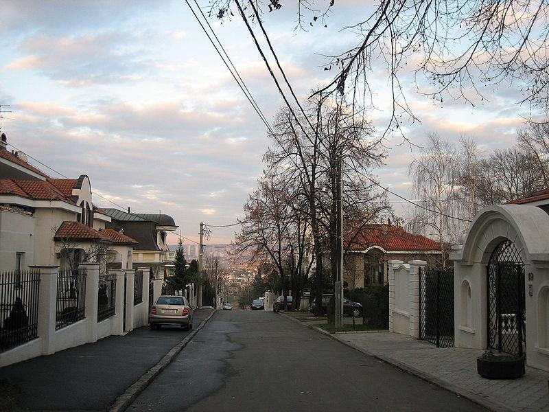 Dedinje