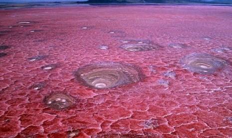Jezero Natron