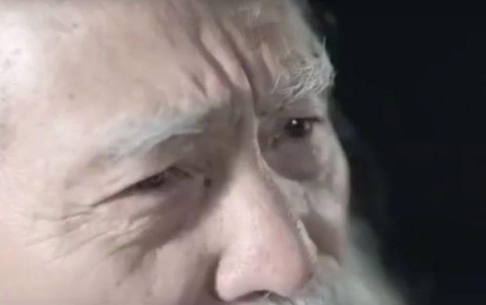 Vang Dešun - kineski maneken