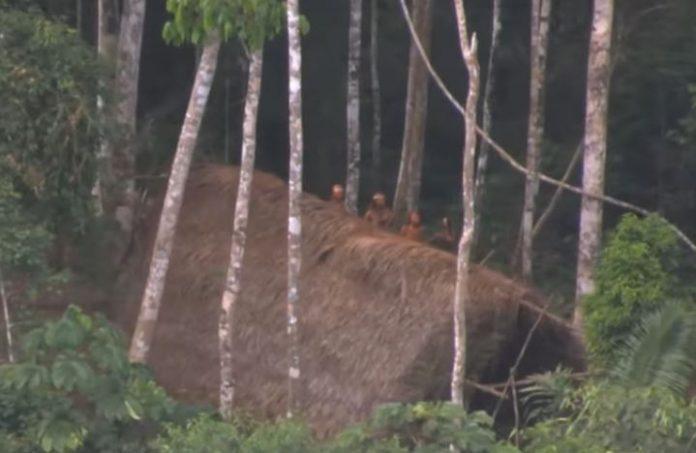 Urođeničko pleme u Amazonskoj prašumi