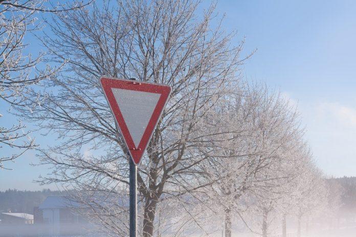 Magla i sneg