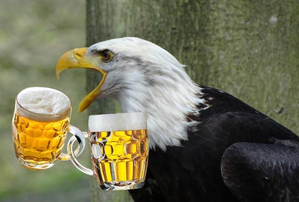 Orao i krigle piva