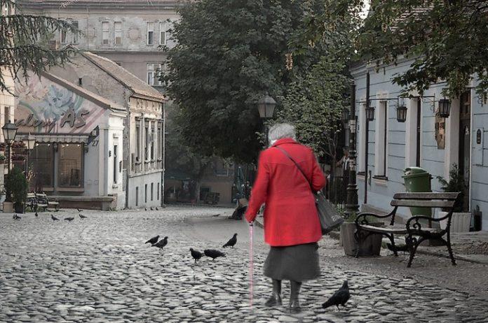 Beogradske bake