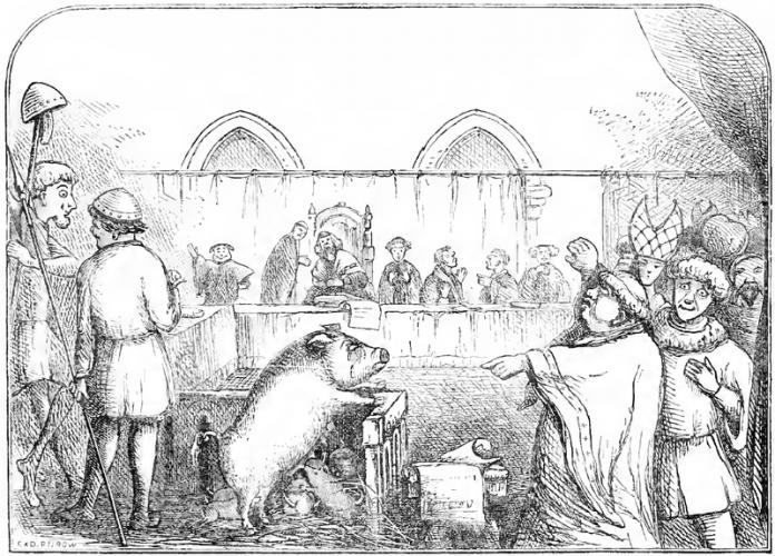 Suđenje životinjama