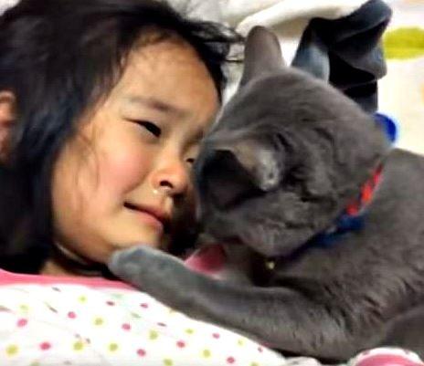 devojčica i maca