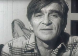Mika Antić