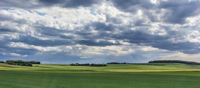 poljana