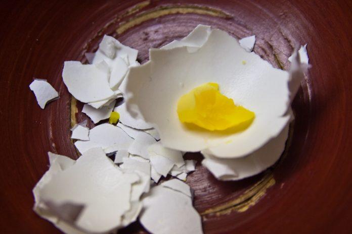 Ljuska jajeta