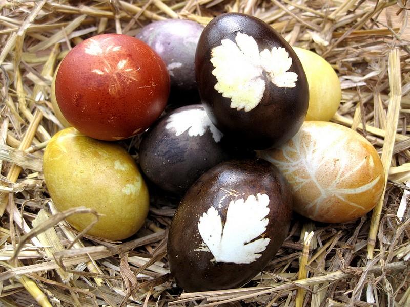 Šaranje jaja